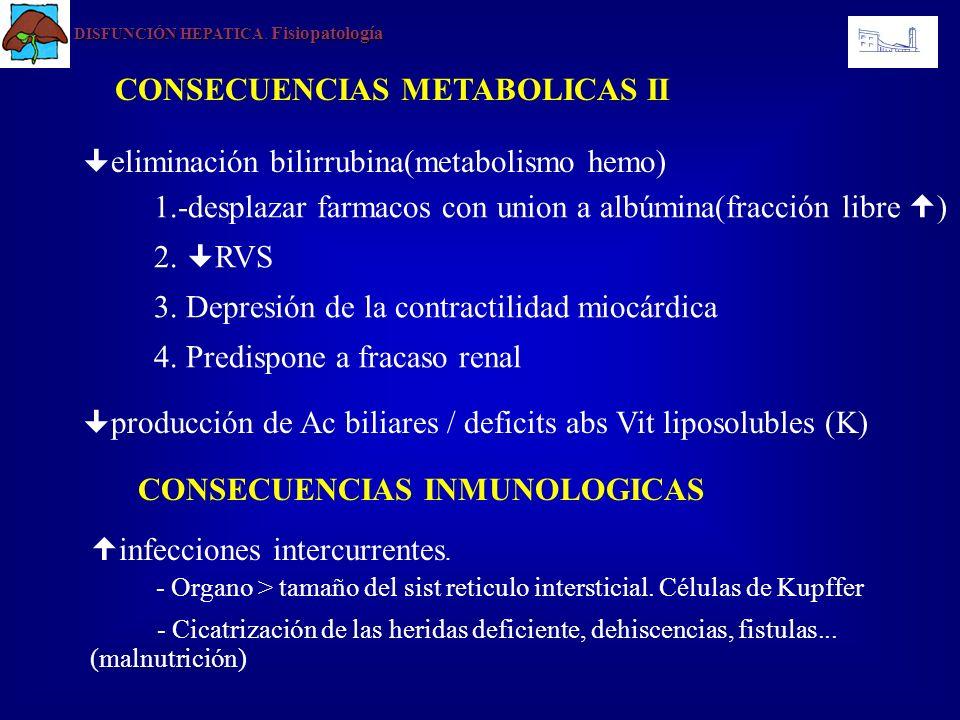 DISFUNCIÓN HEPATICA Fisiopatología DISFUNCIÓN HEPATICA. Fisiopatología CONSECUENCIAS METABOLICAS II eliminación bilirrubina(metabolismo hemo) producci