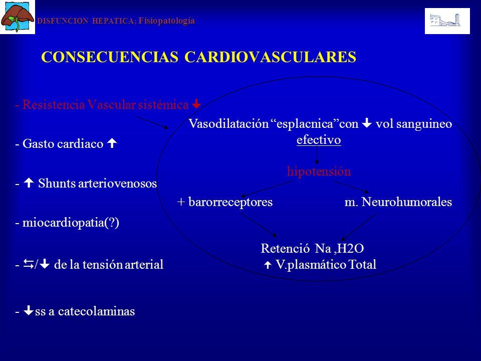 CONSECUENCIAS CARDIOVASCULARES - Resistencia Vascular sistémica - Gasto cardiaco - Shunts arteriovenosos - miocardiopatia(?) - / de la tensión arterial - ss a catecolaminas DISFUNCION HEPATICA Fisiopatología DISFUNCION HEPATICA; Fisiopatología - Reducción de la resistencia vascular sistémica -A pesar de la reducción de la contractilidad miocárdica.