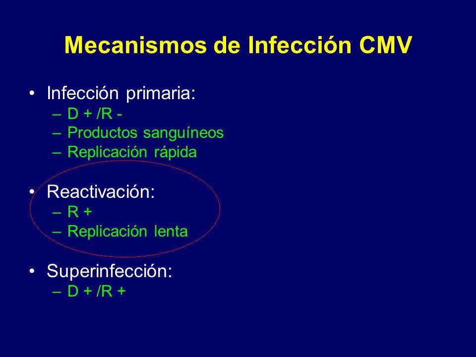 Mecanismos de Infección CMV Infección primaria: –D + /R - –Productos sanguíneos –Replicación rápida Reactivación: –R + –Replicación lenta Superinfecci