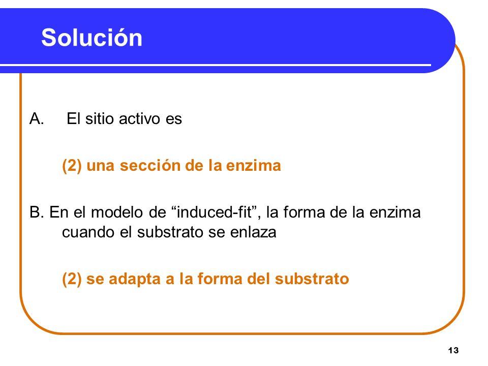 13 Solución A. El sitio activo es (2) una sección de la enzima B. En el modelo de induced-fit, la forma de la enzima cuando el substrato se enlaza (2)
