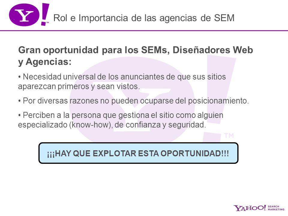 Rol e Importancia de las agencias de SEM Gran oportunidad para los SEMs, Diseñadores Web y Agencias: Necesidad universal de los anunciantes de que sus sitios aparezcan primeros y sean vistos.