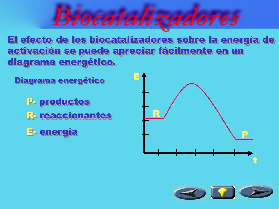 el producto abandona el centro activo y la enzima queda libre.
