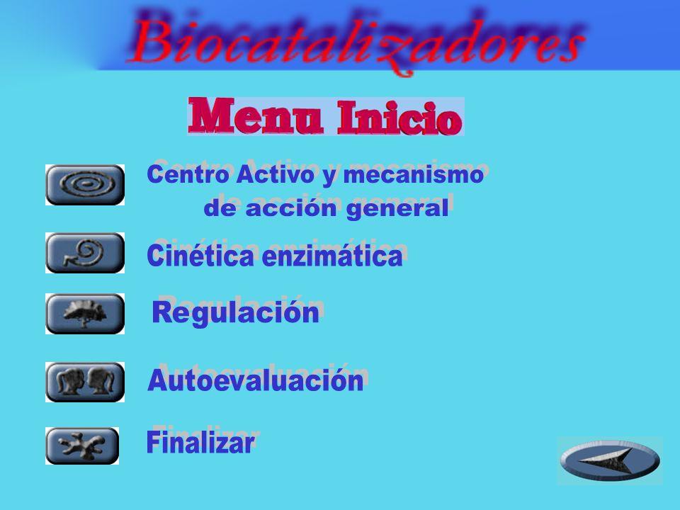 En este animado se presentan aspectos esenciales de los biocatalizadores: En este animado se presentan aspectos esenciales de los biocatalizadores: -Centro activo y mecanismo de acción general.
