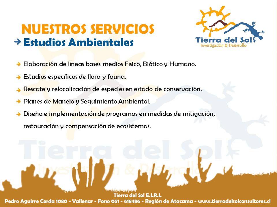 TRAYECTORIA MARZO – DICIEMBRE 2007 EQUIPO COORDINADOR Y EJECUTOR DEL PROYECTO ESTUARIO DEL RÍO HUASCO, UN LABORATORIO IN SITU PARA EL CONOCIMIENTO DE LA BIODIVERSIDAD FONDO DE PROTECCIÓN AMBIENTAL 2007.