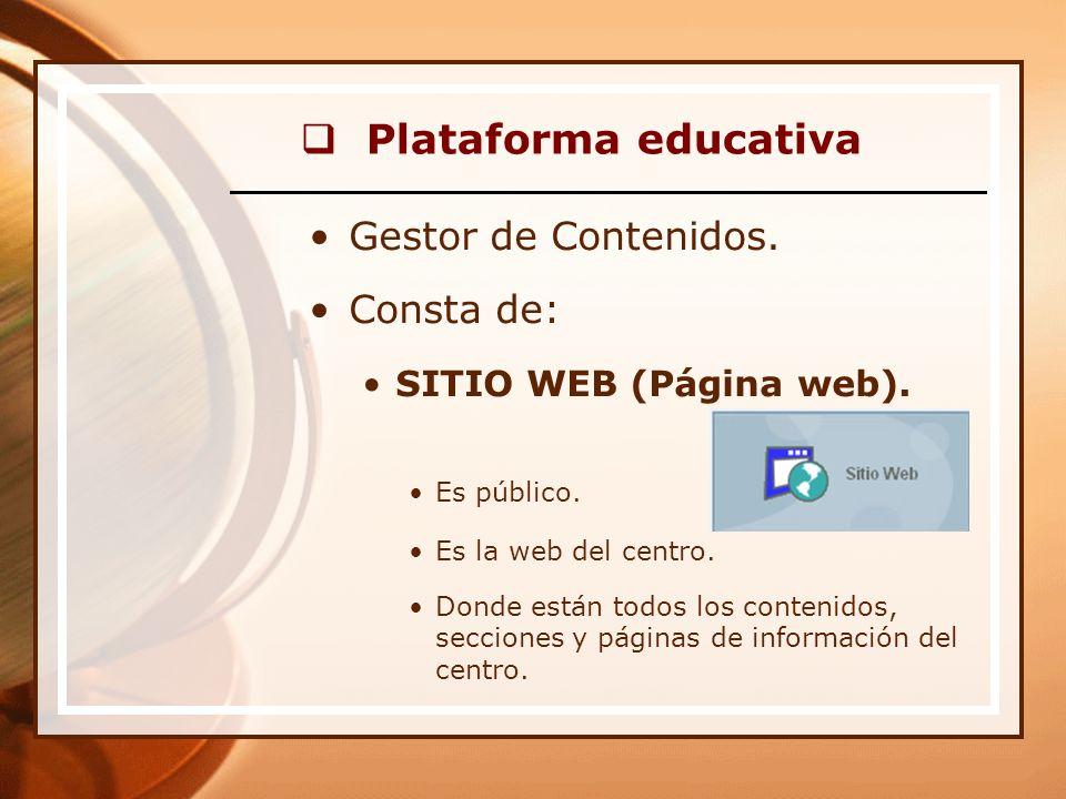 Plataforma educativa Gestor de Contenidos. Consta de: SITIO WEB (Página web).