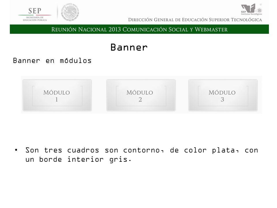 Cd. Madero 2009 Asamblea General Ordinaria del Consejo Nacional de Directores Hermosillo 2010 Banner Son tres cuadros son contorno, de color plata, co