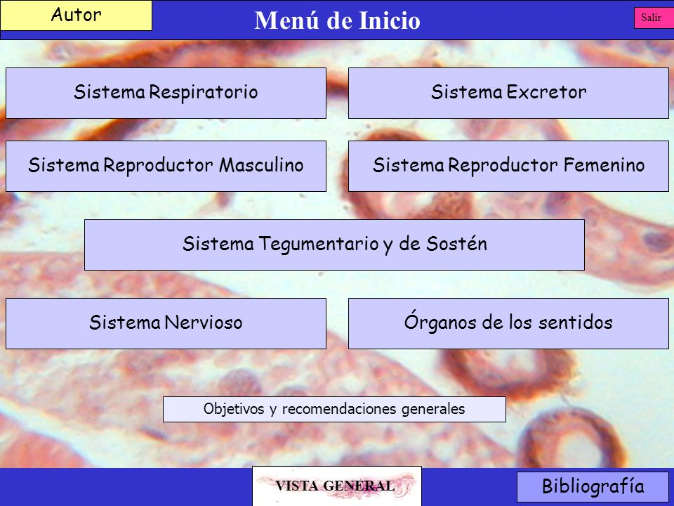 Menú de Inicio Bibliografía Autor Salir Sistema Reproductor Masculino Sistema Tegumentario y de Sostén Sistema Reproductor Femenino Sistema ExcretorSi