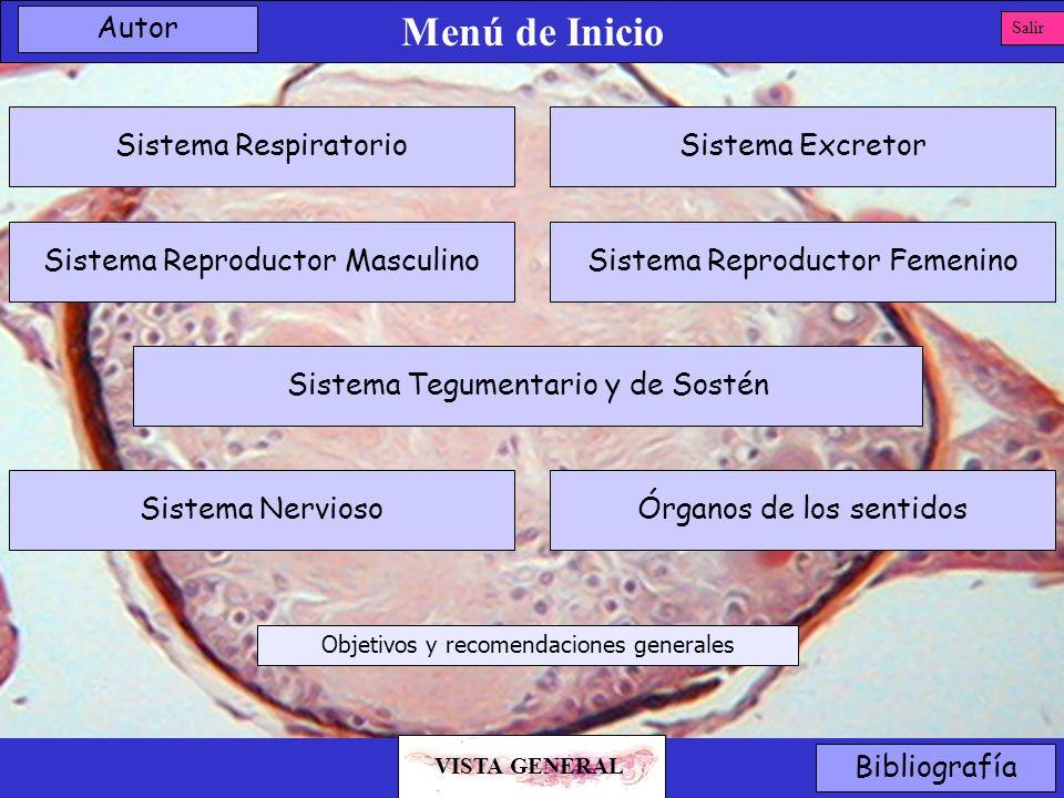Menú de Inicio Sistema Reproductor Masculino Sistema Tegumentario y de Sostén Sistema Reproductor Femenino Sistema ExcretorSistema Respiratorio Órgano