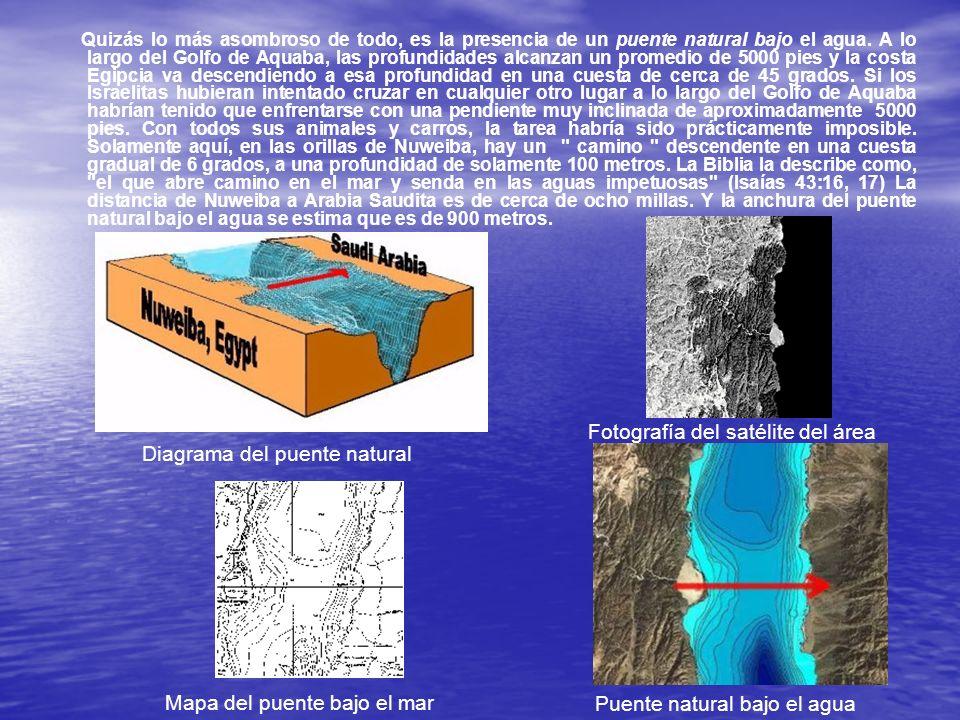 Aarón Sen ha buceado en numerosas ocasiones en este sitio, y puede atestiguar de la veracidad del descubrimiento.