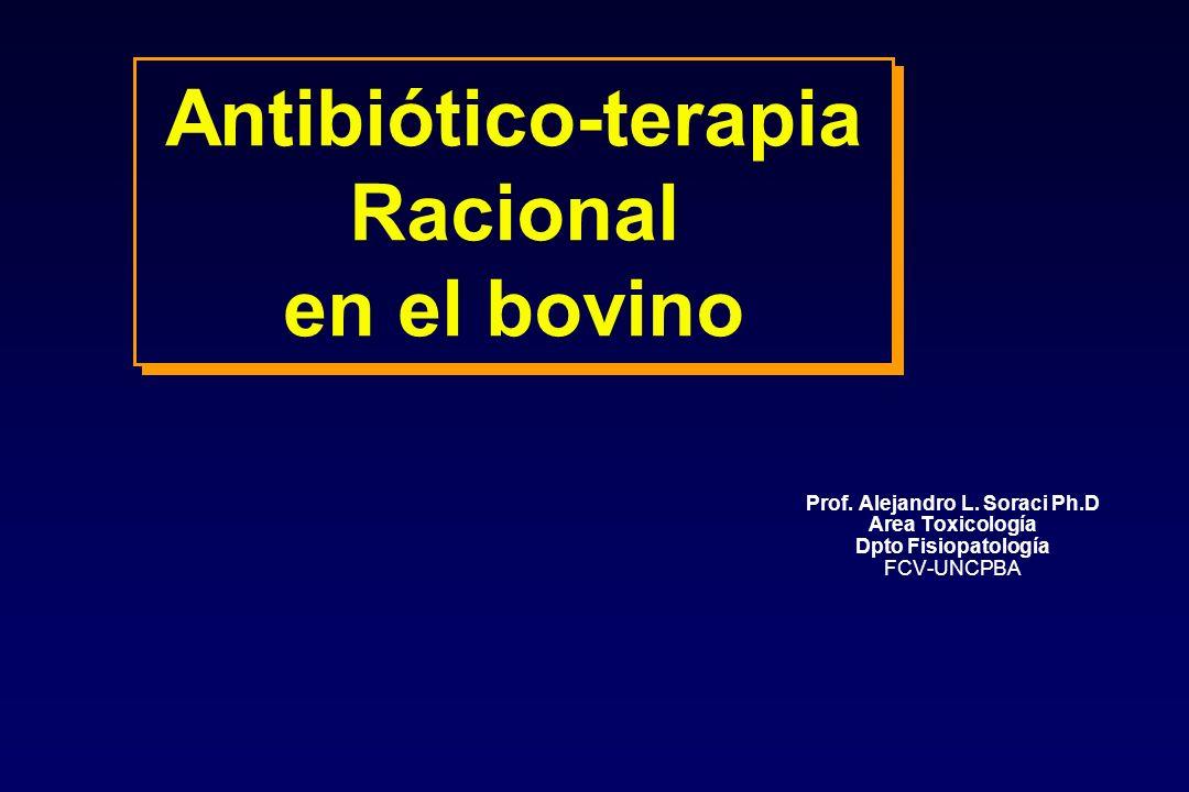 Antibiótico-terapia Racional en el bovino Prof. Alejandro L. Soraci Ph.D Area Toxicología Dpto Fisiopatología FCV-UNCPBA