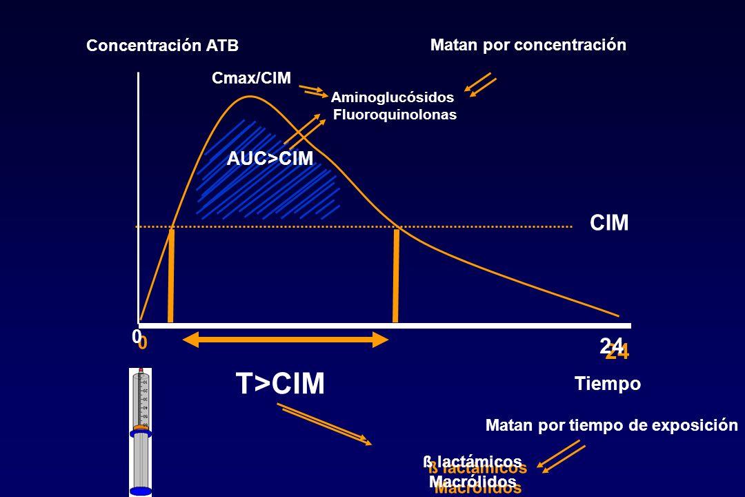 Concentración ATB Tiempo 0 0 24 T>CIM CIM AUC>CIM ß lactámicos Macrólidos ß lactámicos Macrólidos Aminoglucósidos Fluoroquinolonas Matan por tiempo de