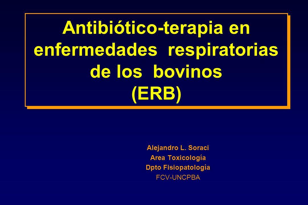 Antibiótico-terapia en enfermedades respiratorias de los bovinos (ERB) Alejandro L. Soraci Area Toxicología Dpto Fisiopatología FCV-UNCPBA