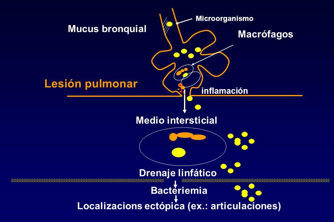 Mucus bronquial Medio intersticial Drenaje linfático Bacteriemia Localizacions ectópica (ex.: articulaciones) Lesión pulmonar Macrófagos Microorganism