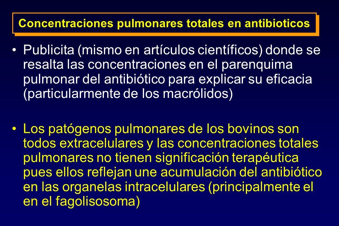 Concentraciones pulmonares totales en antibioticos Publicita (mismo en artículos científicos) donde se resalta las concentraciones en el parenquima pu
