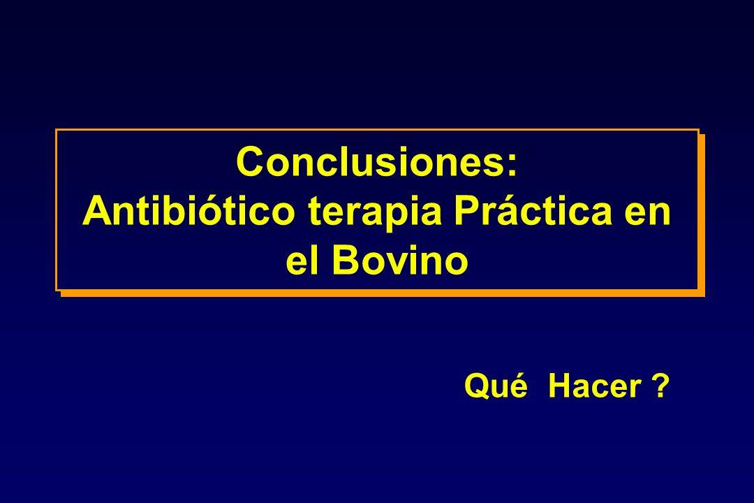Conclusiones: Antibiótico terapia Práctica en el Bovino Qué Hacer ?