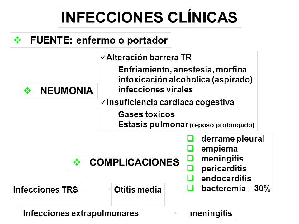 INFECCIONES CLÍNICAS FUENTE: enfermo o portador COMPLICACIONES derrame pleural empiema meningitis pericarditis endocarditis bacteremia – 30% NEUMONIA Alteración barrera TR Enfriamiento, anestesia, morfina intoxicación alcoholica (aspirado) infecciones virales Insuficiencia cardíaca cogestiva Gases toxicos Estasis pulmonar (reposo prolongado) Infecciones TRSOtitis mediaInfecciones extrapulmonaresmeningitis