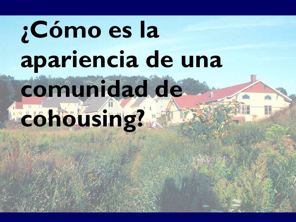 ¿Cómo es la apariencia de una comunidad de cohousing?