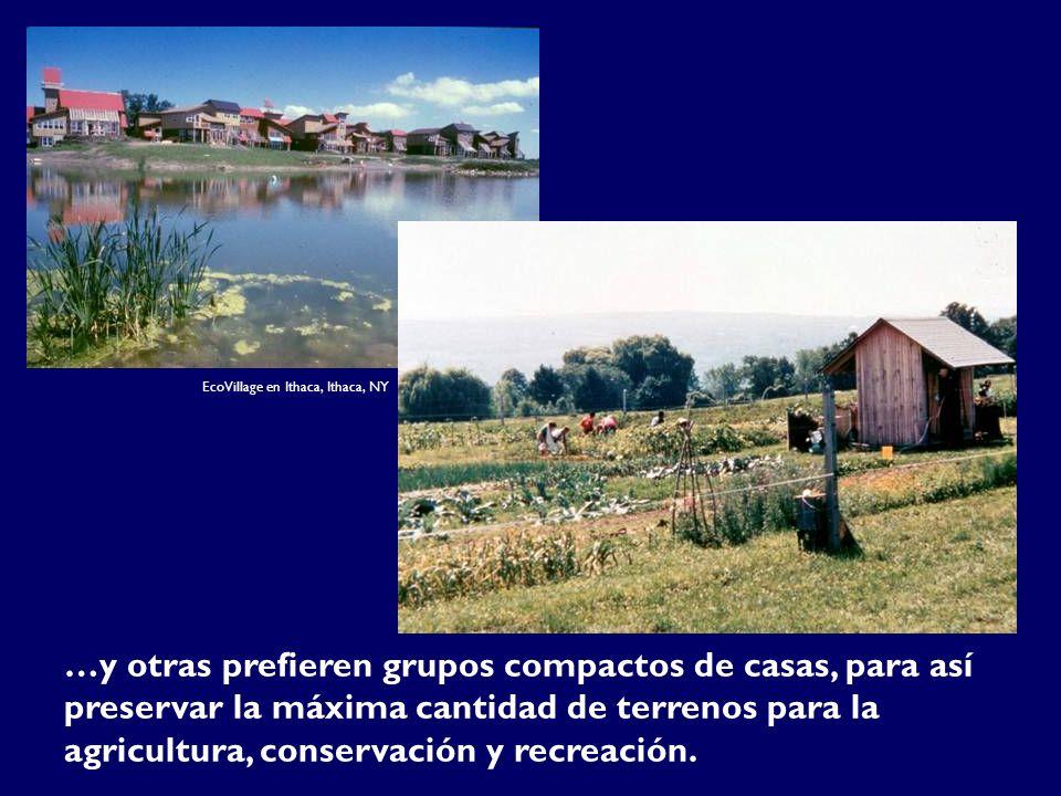 …y otras prefieren grupos compactos de casas, para así preservar la máxima cantidad de terrenos para la agricultura, conservación y recreación. EcoVil