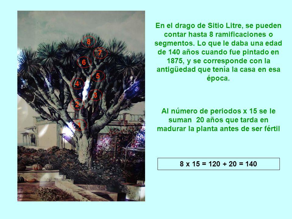 Sitio Litre es una casona edificada en 1730 en Puerto de la Cruz (Tenerife) y comprada en 1774 por los comerciantes ingleses James y Archibald Little