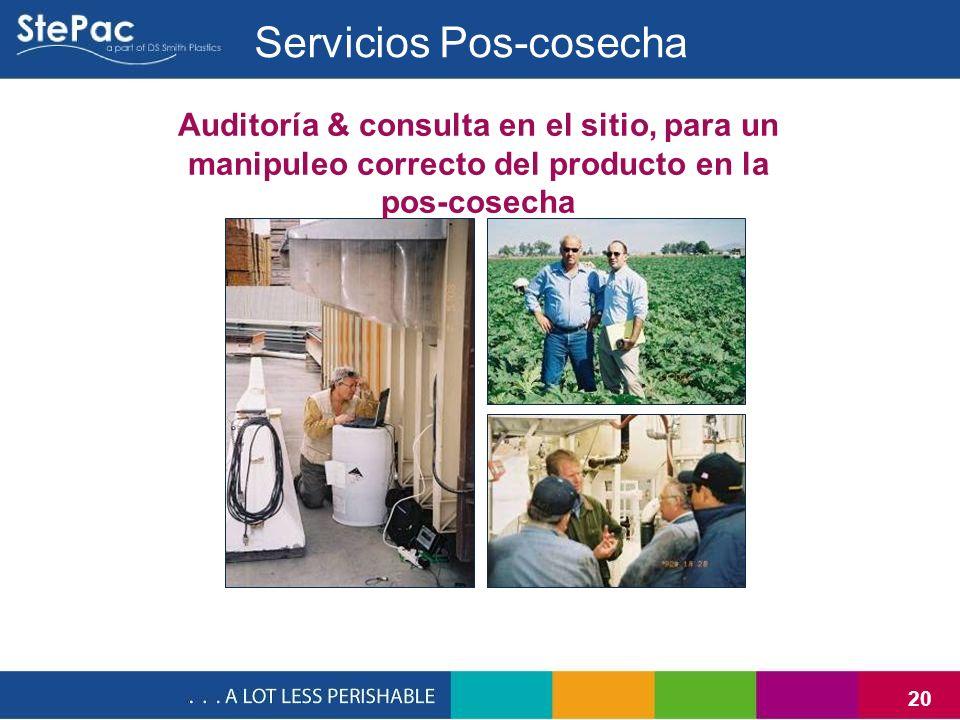 20 Auditoría & consulta en el sitio, para un manipuleo correcto del producto en la pos-cosecha Servicios Pos-cosecha