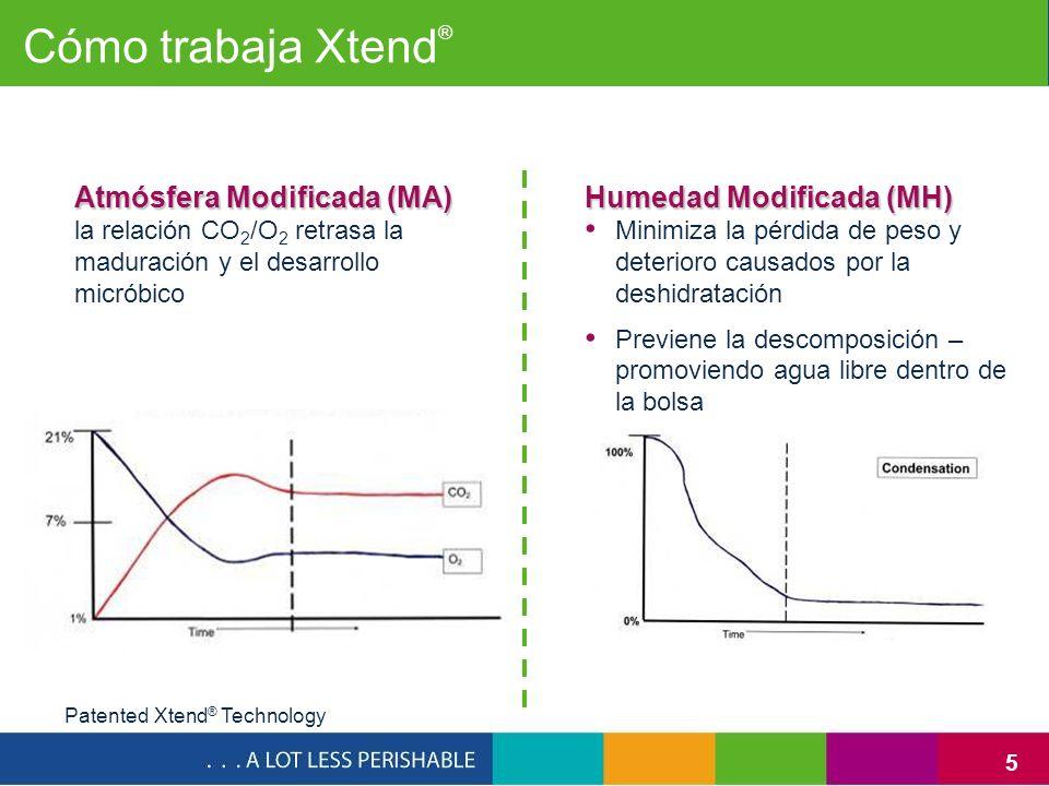 5 Cómo trabaja Xtend ® Patented Xtend ® Technology Humedad Modificada (MH) Minimiza la pérdida de peso y deterioro causados por la deshidratación Prev
