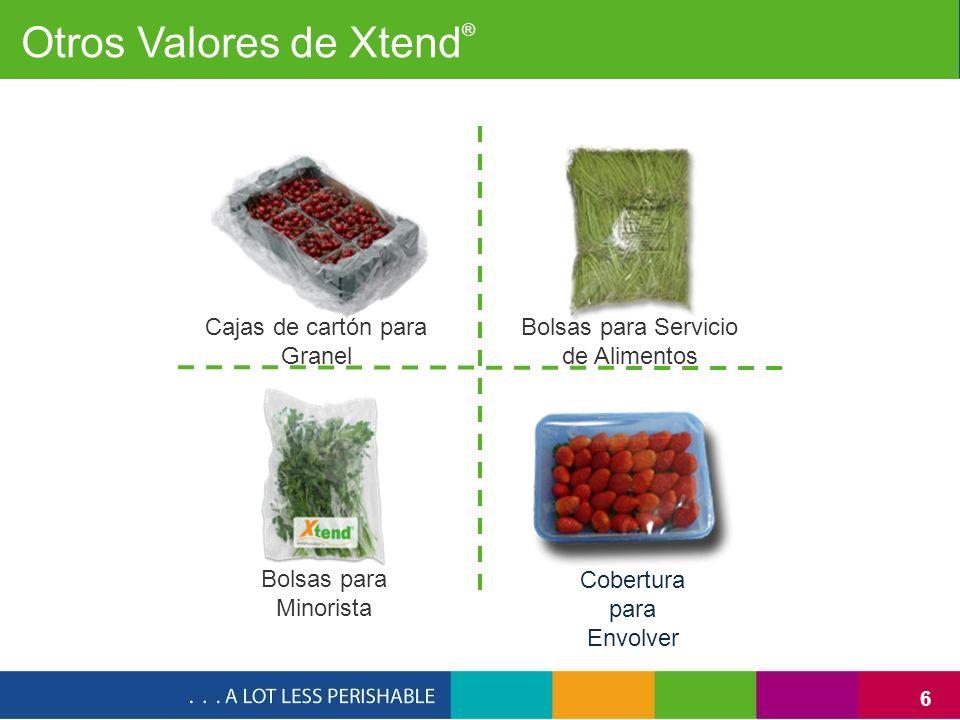 6 Bolsas para Minorista Bolsas para Servicio de Alimentos Cobertura para Envolver Cajas de cartón para Granel Otros Valores de Xtend ®