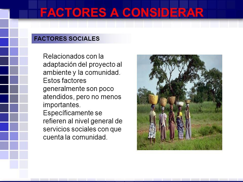 FACTORES A CONSIDERAR Relacionados con la adaptación del proyecto al ambiente y la comunidad.