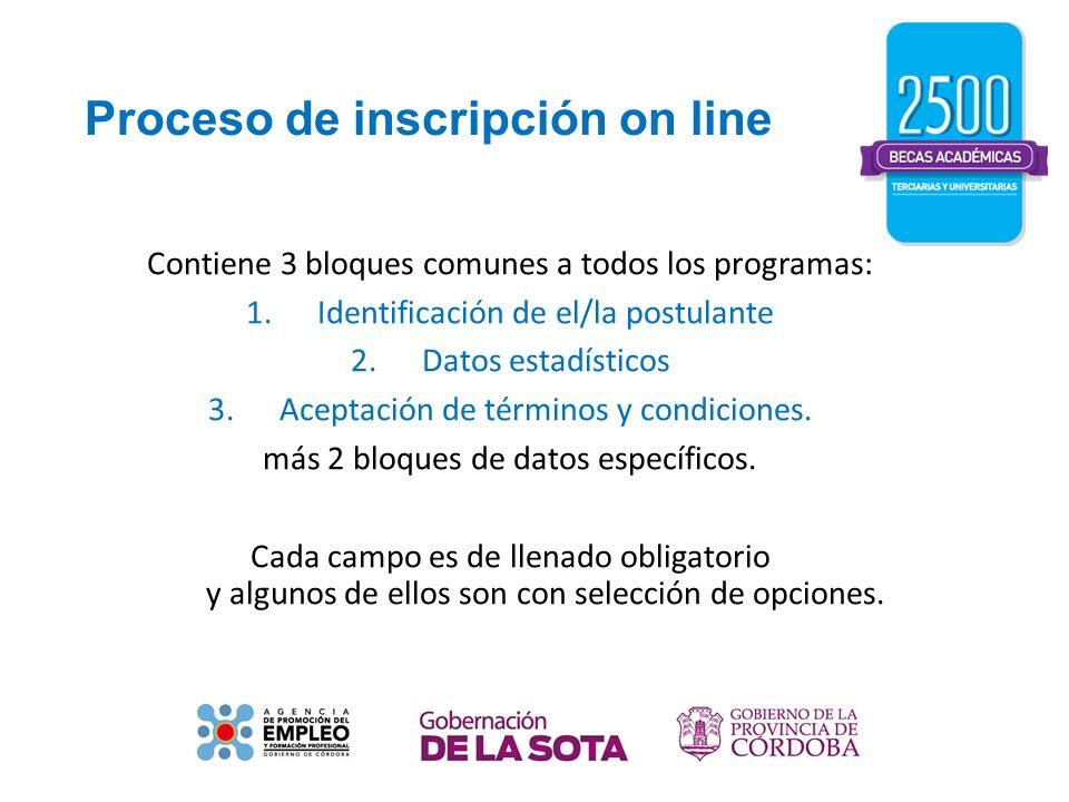 Proceso de inscripción on line Contiene 3 bloques comunes a todos los programas: 1.Identificación de el/la postulante 2.Datos estadísticos 3.Aceptació