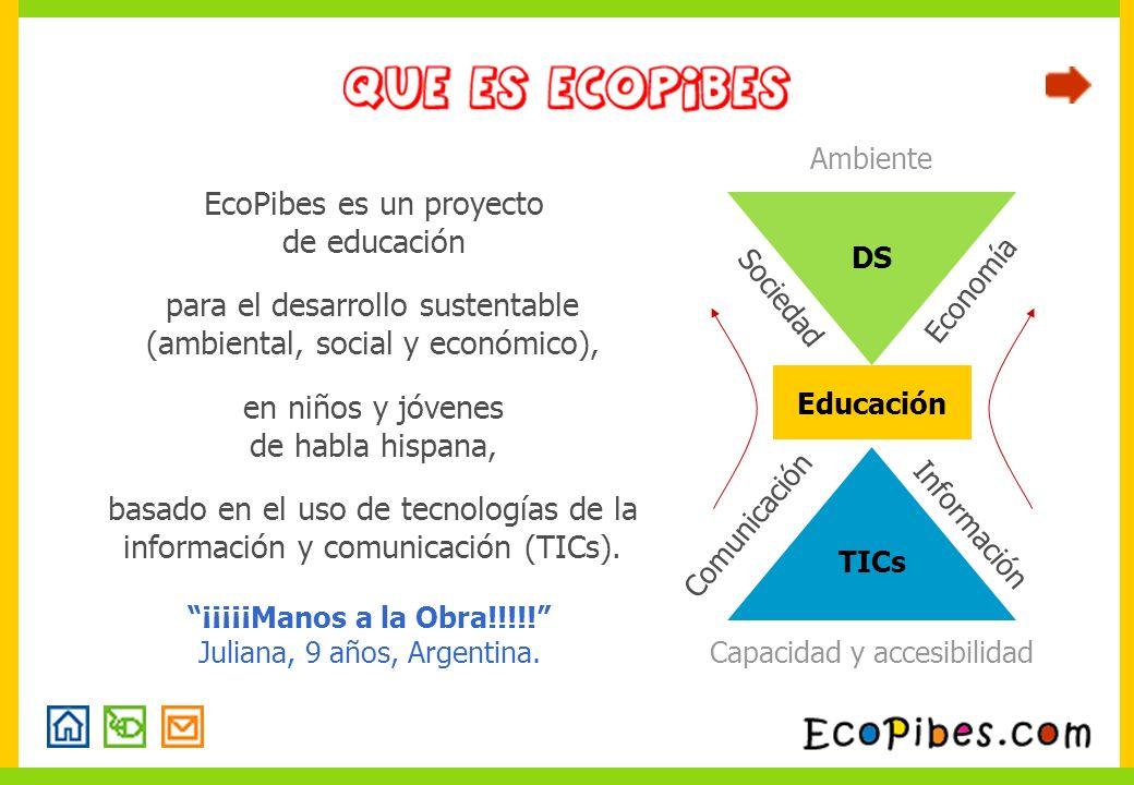 Información Capacidad y accesibilidad Comunicación Educación TICs DS Ambiente Sociedad Economía basado en el uso de tecnologías de la información y co