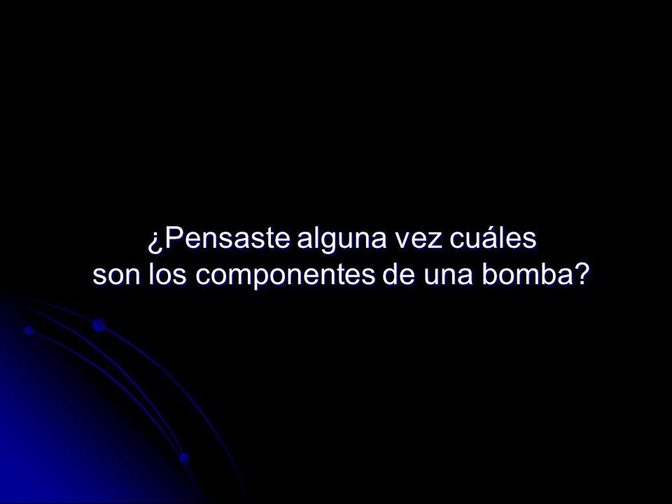 ¿Pensaste alguna vez cuáles son los componentes de una bomba?