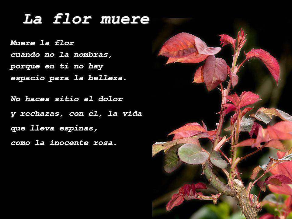Muere la flor cuando no la nombras, porque en ti no hay espacio para la belleza. La flor muere