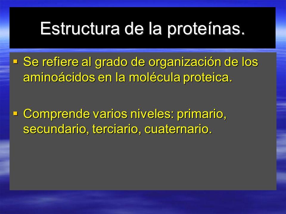 Estructura de la proteínas.