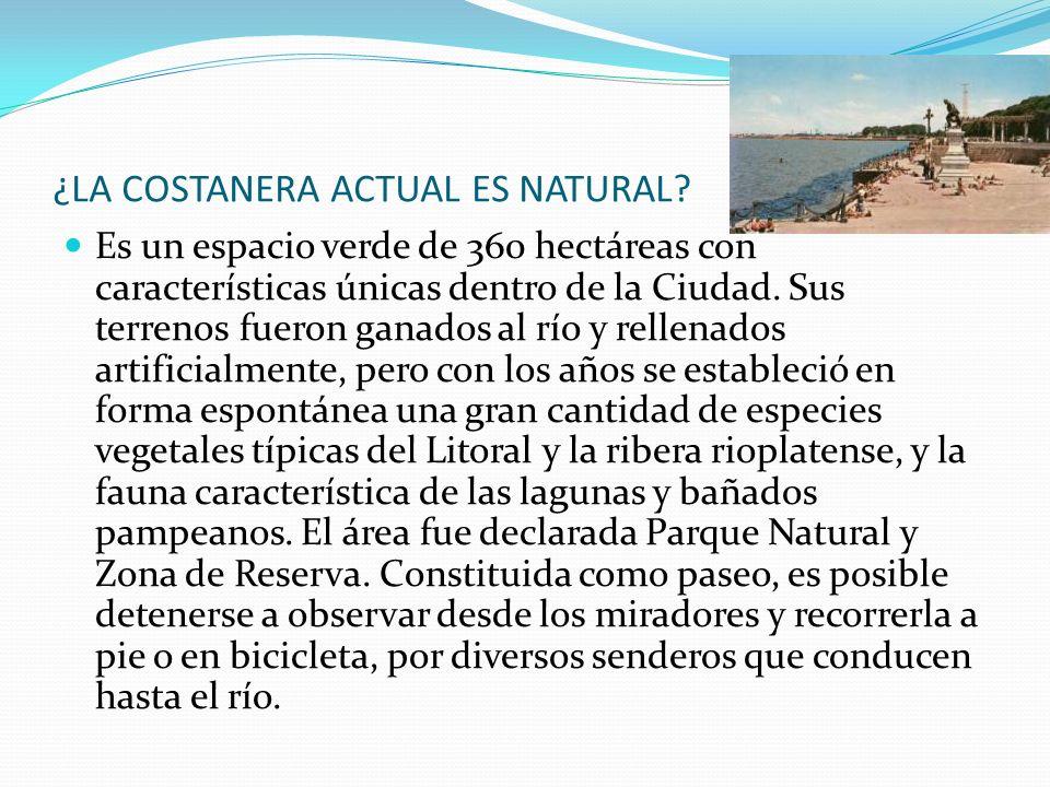 ¿LA COSTANERA ACTUAL ES NATURAL? Es un espacio verde de 360 hectáreas con características únicas dentro de la Ciudad. Sus terrenos fueron ganados al r
