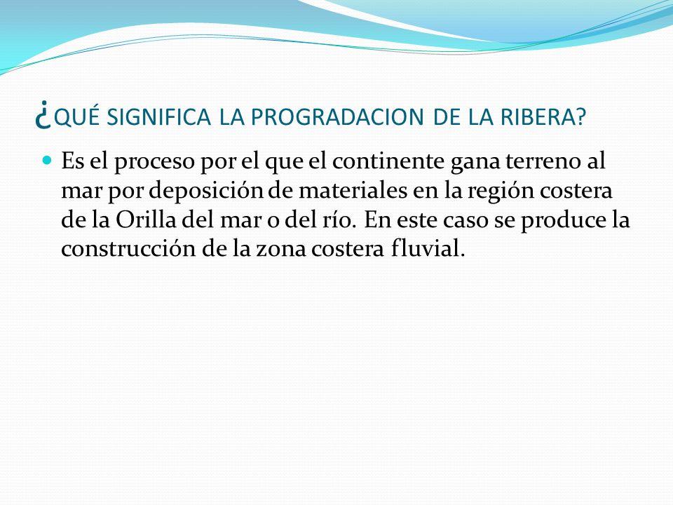 ¿ QUÉ SIGNIFICA LA PROGRADACION DE LA RIBERA? Es el proceso por el que el continente gana terreno al mar por deposición de materiales en la región cos