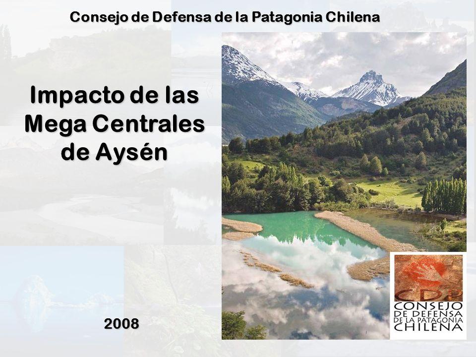 Desde los 43º 38´ hasta 56º latitud Sur Superficie: 240.791,6 Km 2 1/3 de Chile Continental PATAGONIA CHILENA Geografía particular (islas, canales, golfos, etc.) Presencia de Estepa Patagónica Cordillera de los Andes Patagónicos Variedad y particularidad Climática