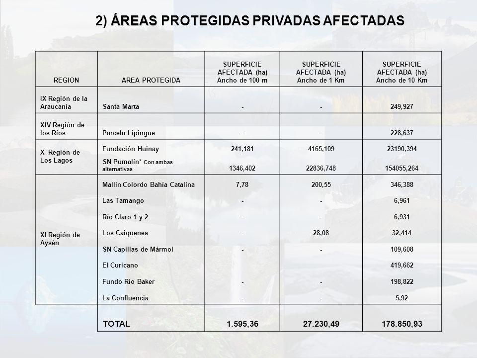 ÁREAS 2) ÁREAS PROTEGIDAS PRIVADAS AFECTADAS REGIONAREA PROTEGIDA SUPERFICIE AFECTADA (ha) Ancho de 100 m SUPERFICIE AFECTADA (ha) Ancho de 1 Km SUPER