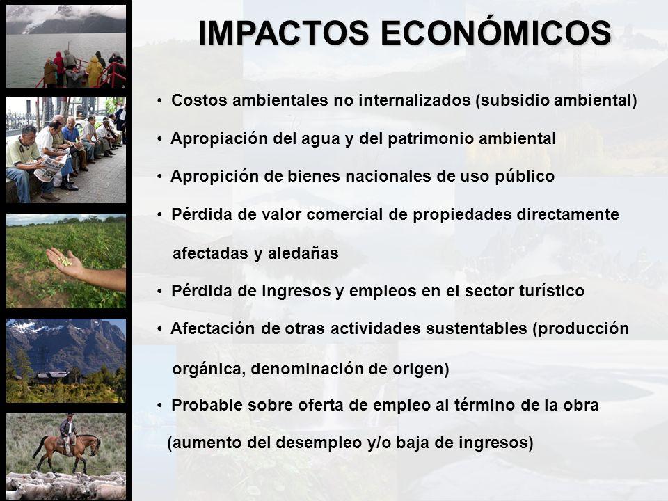 Costos ambientales no internalizados (subsidio ambiental) Apropiación del agua y del patrimonio ambiental Apropición de bienes nacionales de uso públi