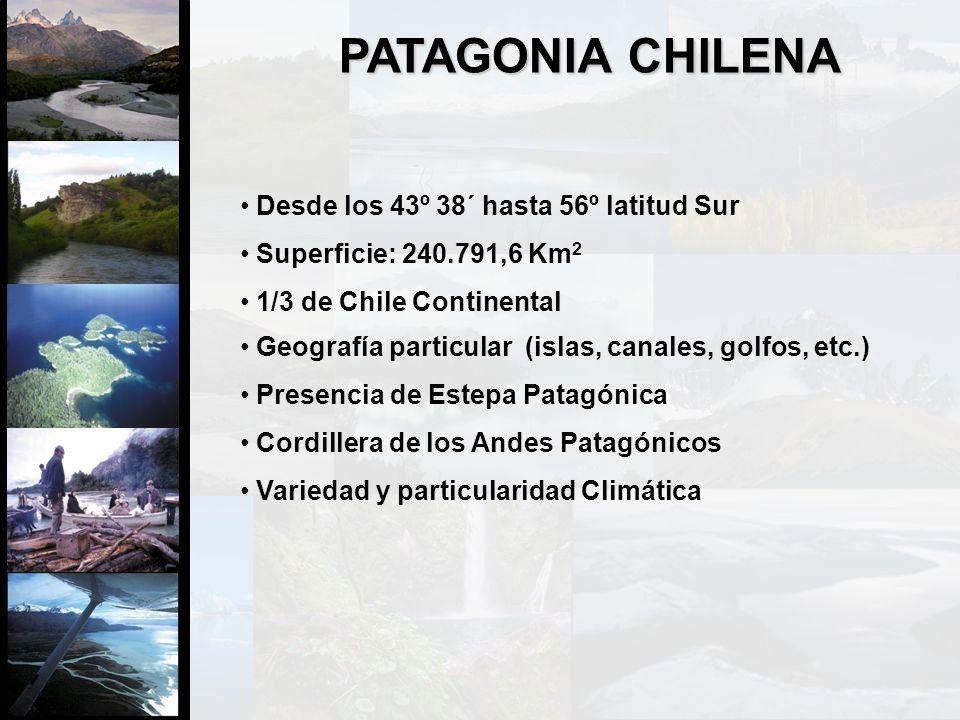 Desde los 43º 38´ hasta 56º latitud Sur Superficie: 240.791,6 Km 2 1/3 de Chile Continental PATAGONIA CHILENA Geografía particular (islas, canales, go