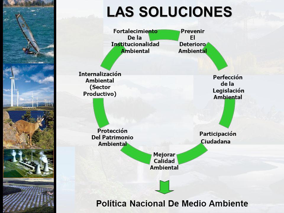 LAS SOLUCIONES Prevenir El Deterioro Ambiental Perfección de la Legislación Ambiental Participación Ciudadana Mejorar Calidad Ambiental Protección Del