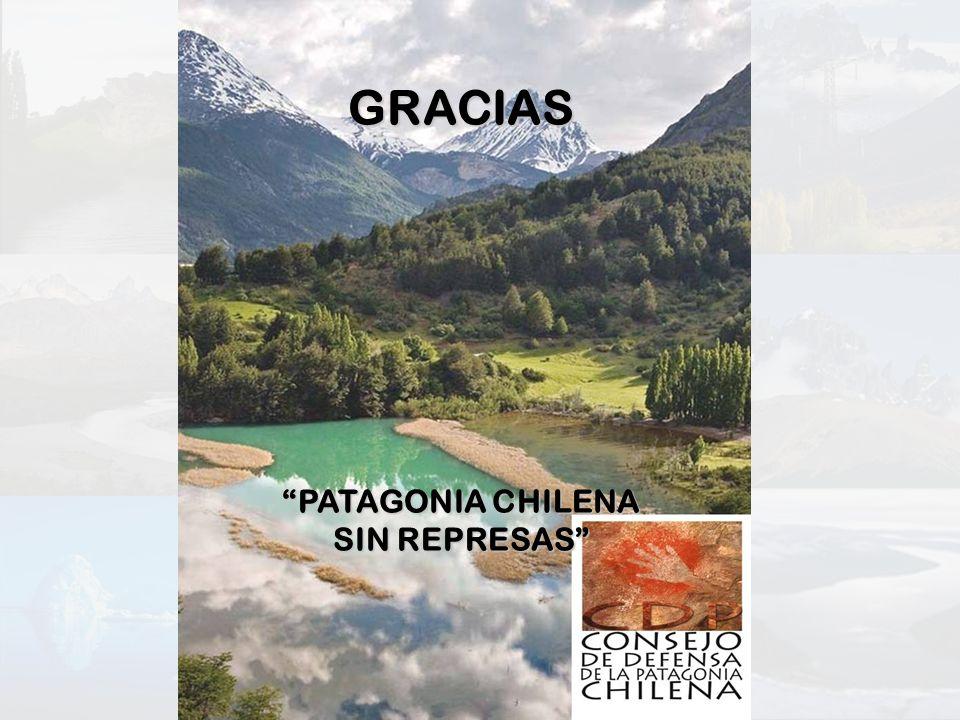 GRACIAS PATAGONIA CHILENA SIN REPRESAS