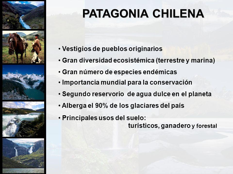 Vestigios de pueblos originarios Gran diversidad ecosistémica (terrestre y marina) Gran número de especies endémicas Importancia mundial para la conse