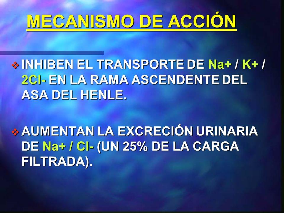 DIURÉTICOS DE ASA.FUROSEMIDA. FUROSEMIDA. BUMETANIDA.