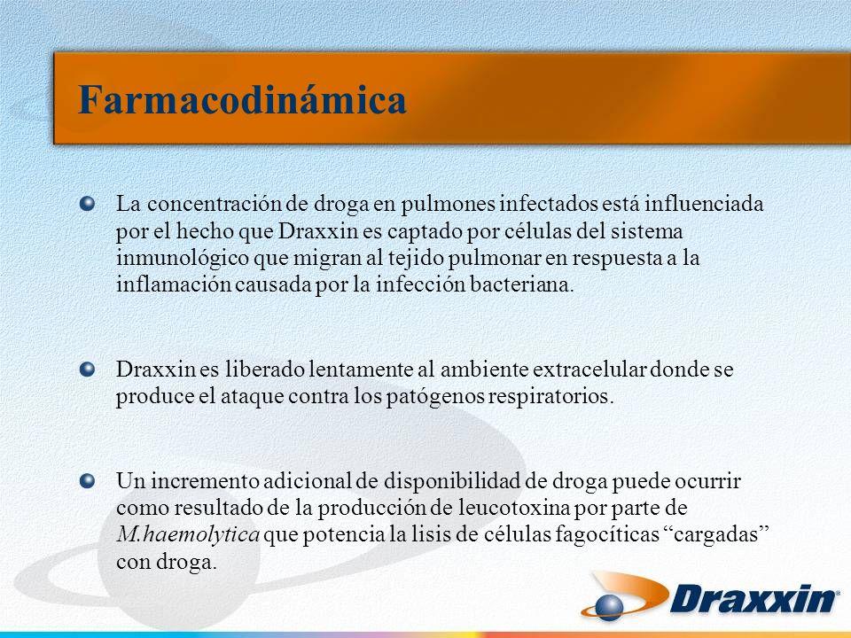 Farmacodinámica La concentración de droga en pulmones infectados está influenciada por el hecho que Draxxin es captado por células del sistema inmunológico que migran al tejido pulmonar en respuesta a la inflamación causada por la infección bacteriana.