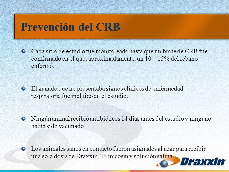 Prevención del CRB Cada sitio de estudio fue monitoreado hasta que un brote de CRB fue confirmado en el que, aproximadamente, un 10 – 15% del rebaño enfermó.