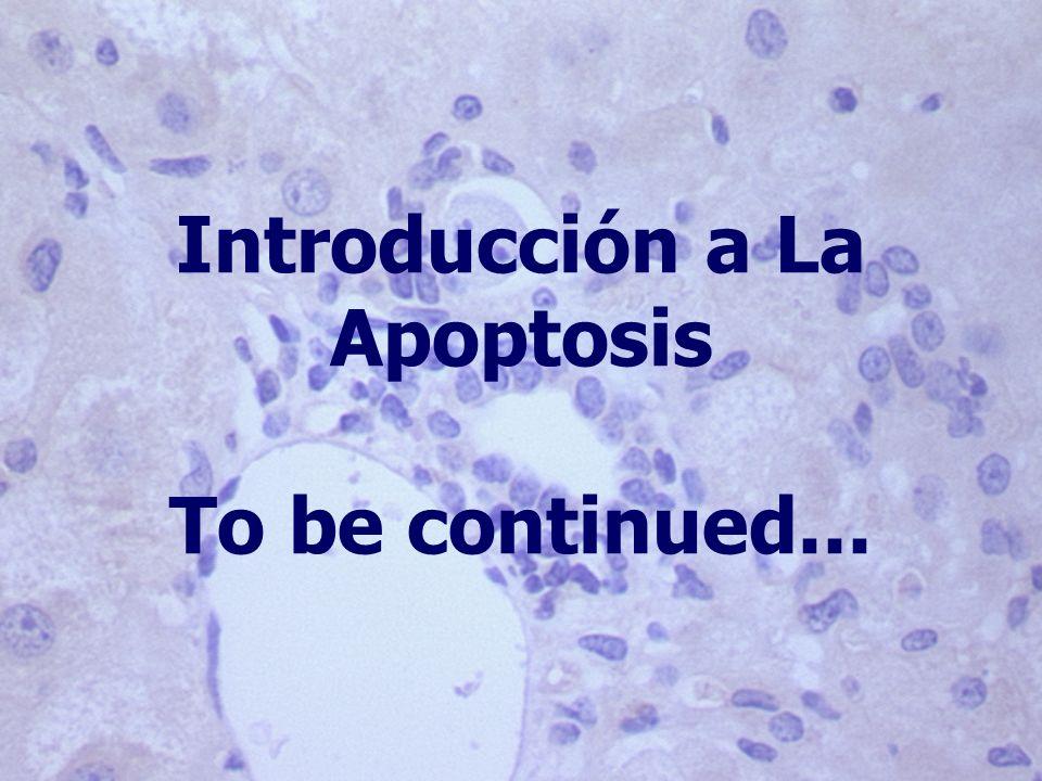 Introducción a La Apoptosis To be continued...