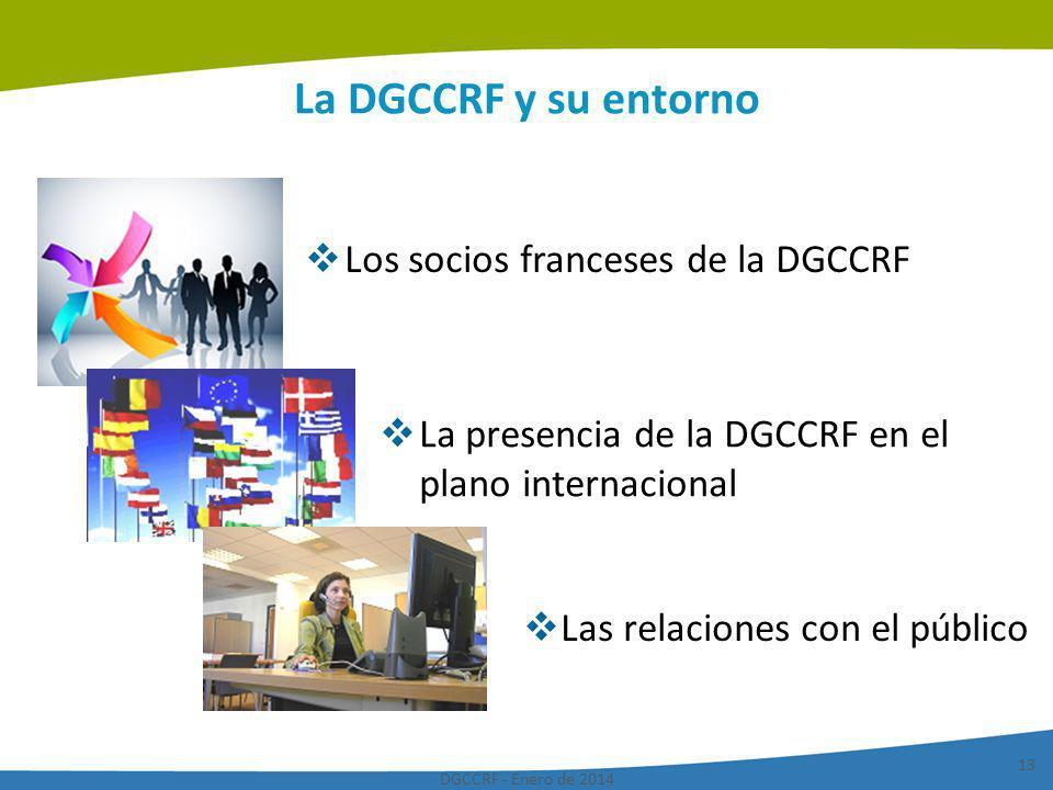 DGCCRF - Enero de 2014 13 La DGCCRF y su entorno Los socios franceses de la DGCCRF La presencia de la DGCCRF en el plano internacional Las relaciones