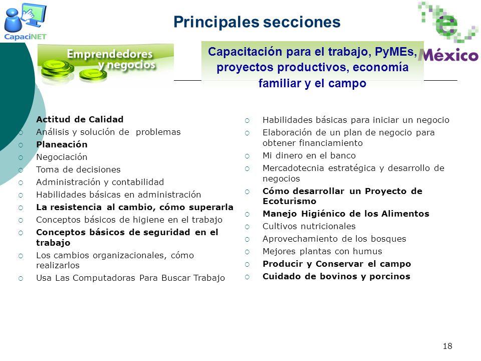 18 Principales secciones Actitud de Calidad Análisis y solución de problemas Planeación Negociación Toma de decisiones Administración y contabilidad H