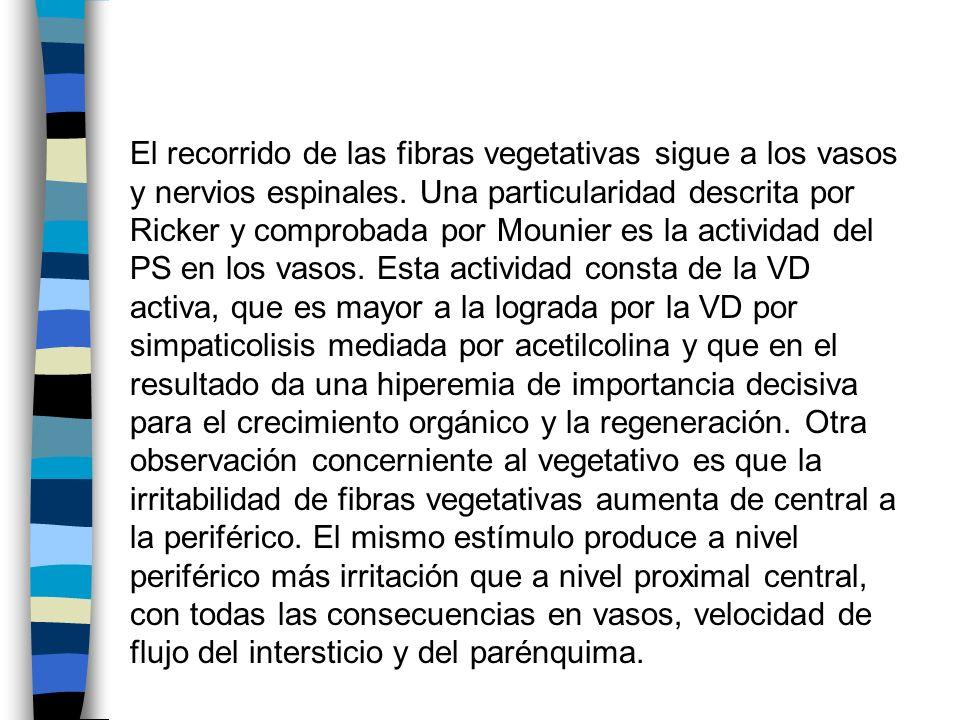 El recorrido de las fibras vegetativas sigue a los vasos y nervios espinales. Una particularidad descrita por Ricker y comprobada por Mounier es la ac