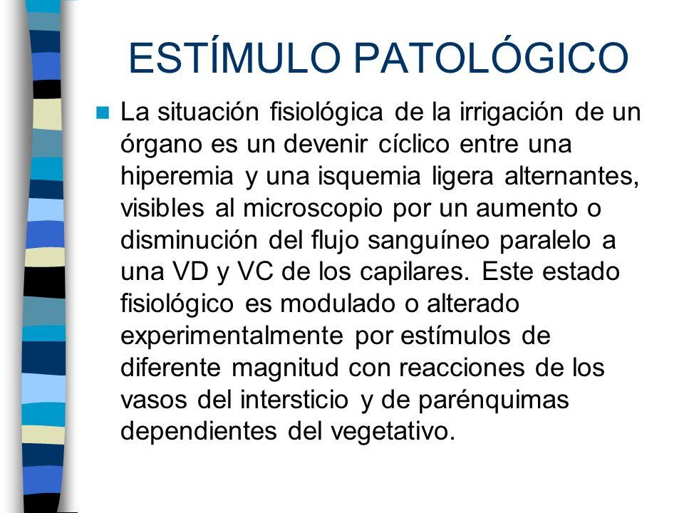 ESTÍMULO PATOLÓGICO La situación fisiológica de la irrigación de un órgano es un devenir cíclico entre una hiperemia y una isquemia ligera alternantes