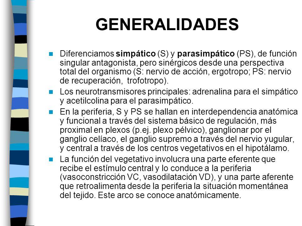 GENERALIDADES Diferenciamos simpático (S) y parasimpático (PS), de función singular antagonista, pero sinérgicos desde una perspectiva total del organ